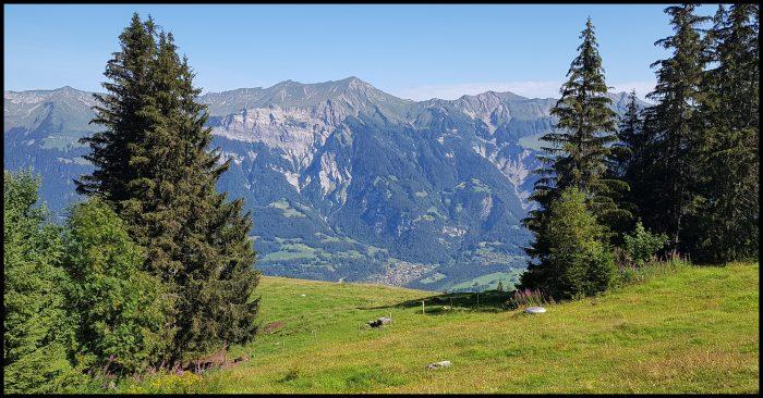 uitzicht op natuur, natuurfoto