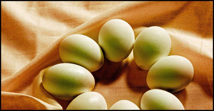 eieren eten is gezond
