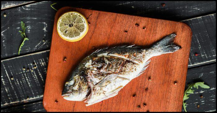 Is consumptie van vette vis gezond, vegan omega 3 en visolie gezond